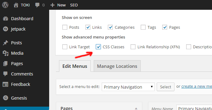 screen-options-wordpress-menus