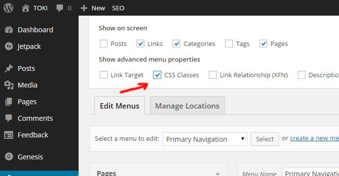 screen-options-wordpress-menus