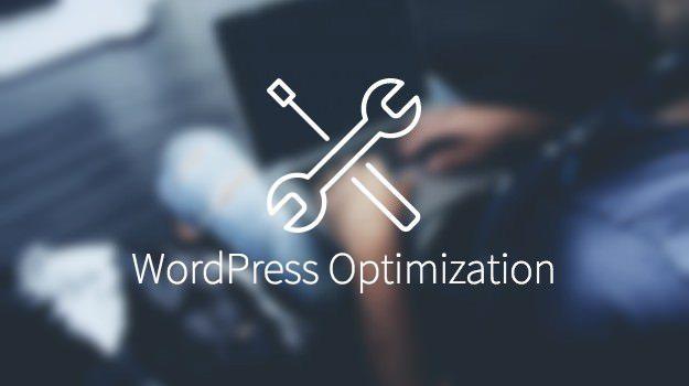Performanta WordPress